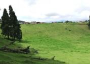 Rancho redondo  – goicoechea  - s.j