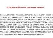 Dueño vende finca ganadera en los chiles