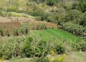 Amplio terreno en venta san ramon en san ramón
