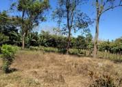 Vendo terreno en alajuela san ramon en san ramón