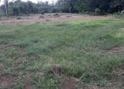 2 hectareas en pococí