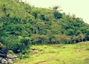 Venta de terreno con potencial turistico en san ramon en san ramón