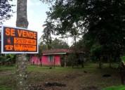Se venden 10 4 hectareas en pococí