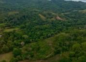 Bosque humedo tropical primario vocacion ecologica se vende en liberia