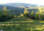 Finca ganadera 160 hectareas en puriscal