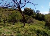 Venta terreno amplio guanacaste canitas camino santa helena en abangares