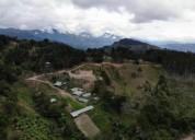 Venta de finca en san cristobal sur desamparados san jose