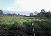 Urge vender terreno de  2 hectareas cn casa..