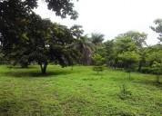 Ganga se vende propiedad en guanacaste