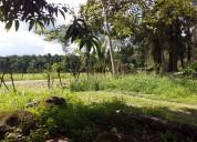 Linda quinta en rio san josé-horquetas