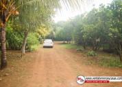 Casa quinta en venta - masaya