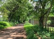 Venta de lotes - terrenos - parcelas en masaya