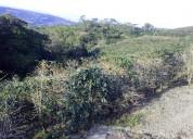 Sabanilla de alajuela, 200 metros frente carretera