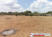 Terrenos en masaya